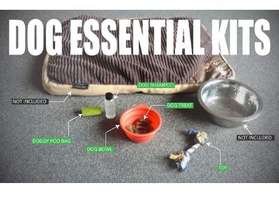 Dog essential kits